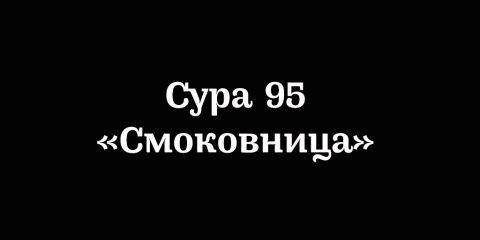 Сура 95