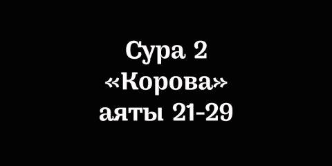 аяты 21-29