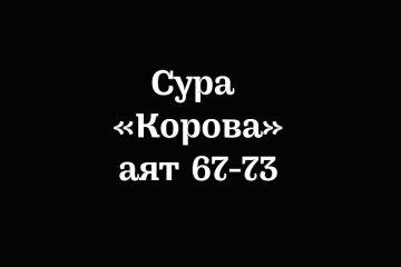 Сура «Корова»: аяты 67-73