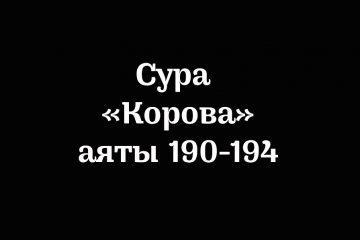 Сура «Корова»: аяты 190-194