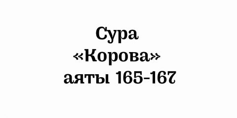Сура «Корова»: аяты 165-167