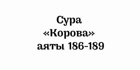 Сура «Корова»: аяты 186-189
