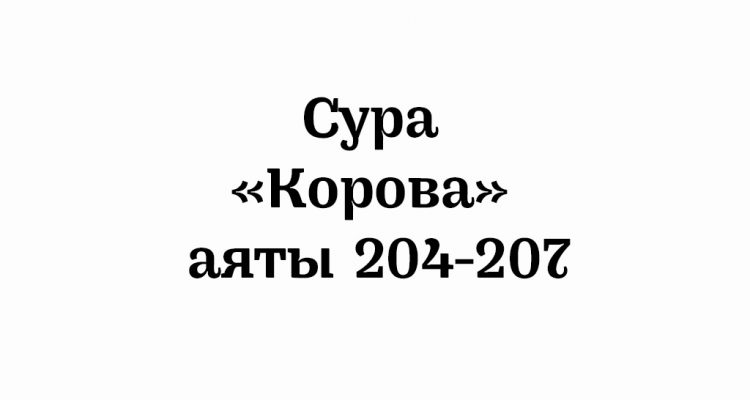 Сура «Корова»: аяты 204-207
