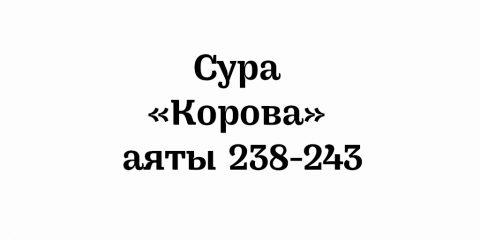 Сура «Корова»: аяты 238-243