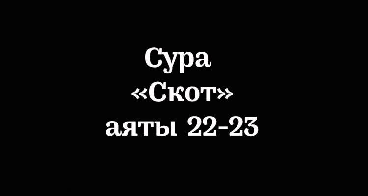 Сура «Скот»: аяты 22-23