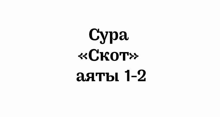 Сура «Скот»: аяты 1-2