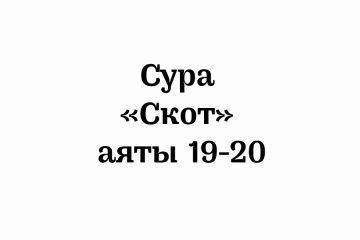 Сура «Скот»: аяты 19-20