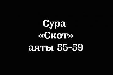 Сура «Скот»: аяты 55-59