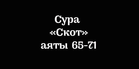 Сура «Скот»: аяты 65-71