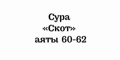 Сура «Скот»: аяты 60-62