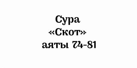 Сура «Скот»: аяты 74-81