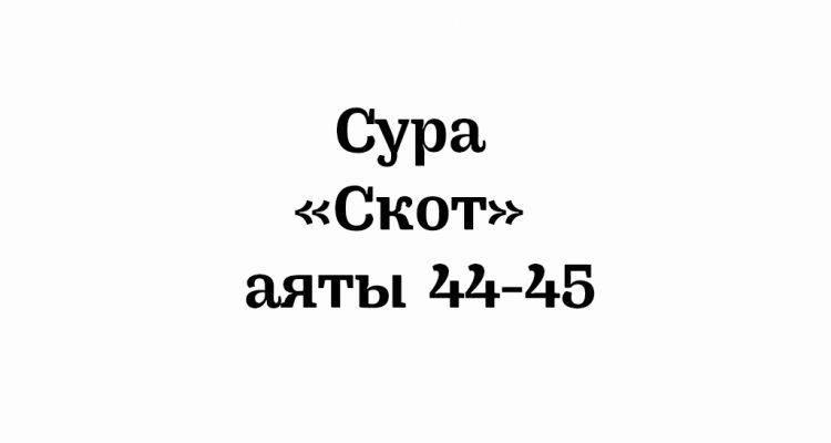 Сура «Скот»: аяты 44-45