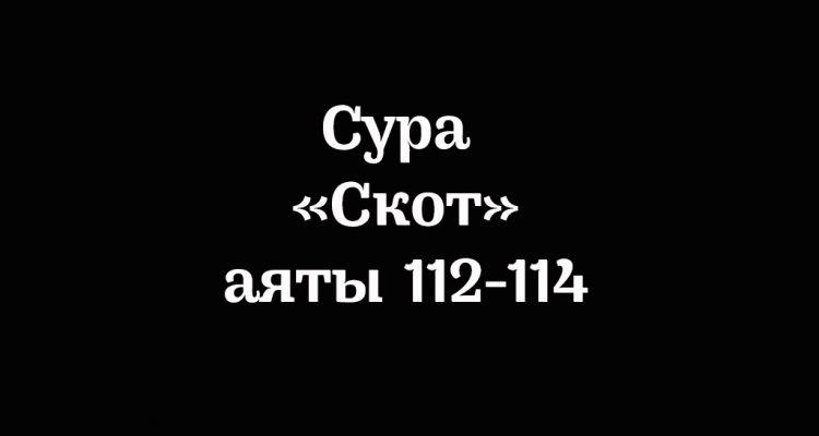 Сура «Скот»: аяты 112-114
