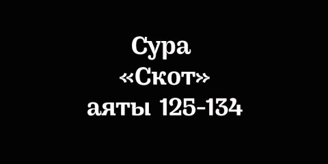Сура «Скот»: аяты 125-134