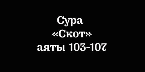 Сура «Скот»: аяты 103-107