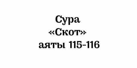 Сура «Скот»: аяты 115-116