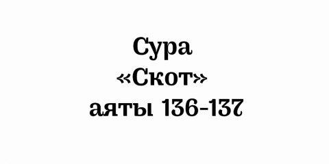 Сура «Скот»: аяты 136-137