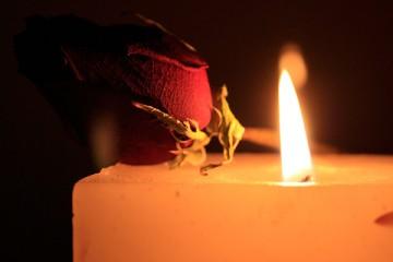 роза-на-свече
