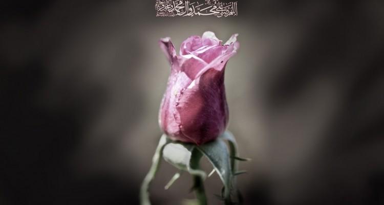 двенадцати имамов