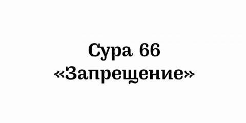 Сура 66