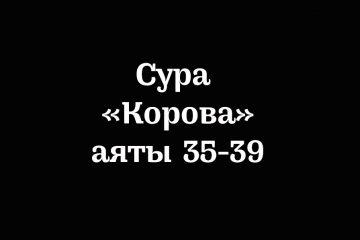 Сура «Корова»: аяты 35-39