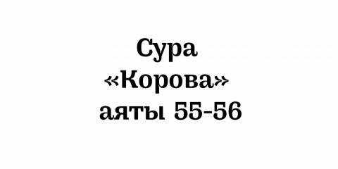 Сура «Корова»: аят 55-56