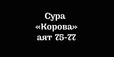 Сура «Корова»: аяты 75-77