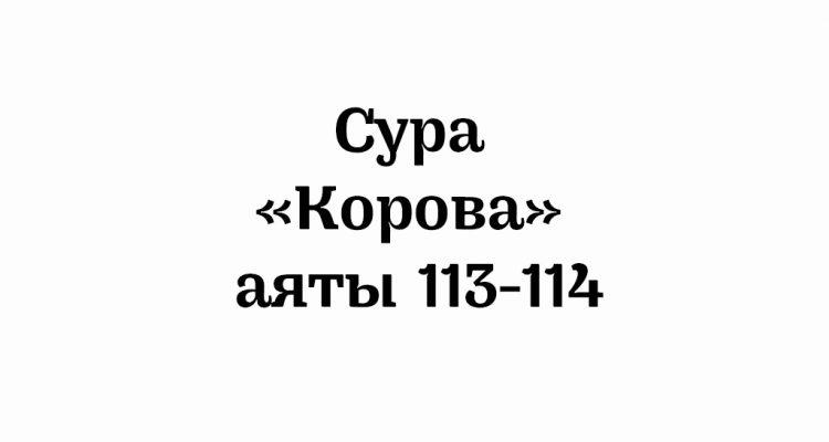 Сура «Корова»: аяты 113-114