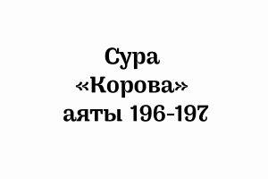 Сура «Корова»: аяты 196-197