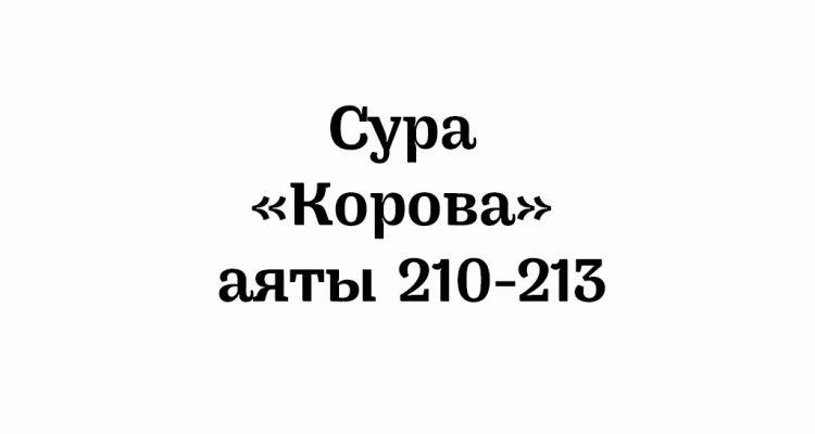 Сура «Корова»: аяты 210-213