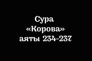 Сура «Корова»: аяты 234-237