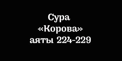 Сура «Корова»: аяты 224-229